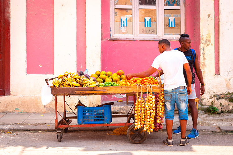 Cuban Fruit Cart
