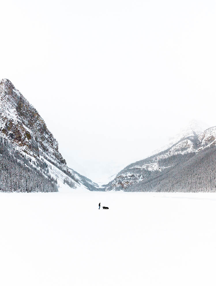 Lake Louise, Winter 2020